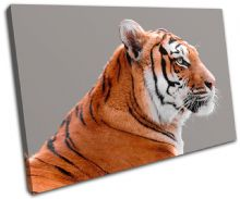 Tiger Wildlife Animals - 13-1524(00B)-SG32-LO